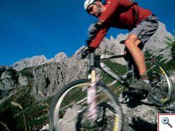 bike_dynamik.jpg
